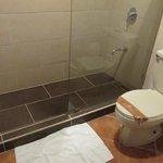 Bathroom- shower, old toilet