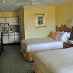 deluxe suite, room 206