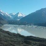 Tasman lake and icebergs 1hr from motel