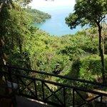 Mango Moon Gecko Suite Patio View - Guest Photo