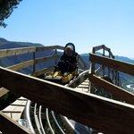 Alpine Coaster, worth the cost of admission!!! F-U-N!!!!