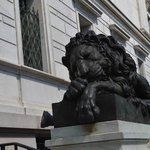 One of the lions outside