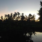 view before dawn