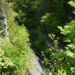 Watkins Glen State Park