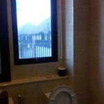 see-through glass panel in toilet