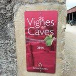 Vignes en Caves Domaine de l'Erable