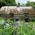 The gardens at Thomas Hardy's Cottage