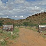 The Damara run Petrified Forest site - cheaper and more natural