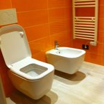 clean toilet with bidet