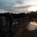 bridge oder the lagoon