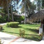 I giardini del Viva Dominicus Beach