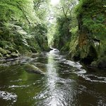 View upstream at Fairy Glen