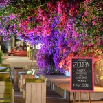 Zoupa Greek Cuisine at the old olive factory