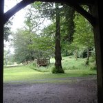 View from open fronted barn (where we had our picnic!)