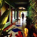 Photo of Tamarindo Hostel Resort