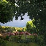 vu du jardin vers le Mont Ventoux
