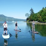 stand up paddle boarding, Brentwood Bay, BC