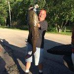 Huge Catfish caught at River Bay