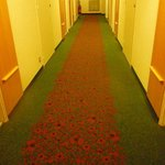 Red Poppy Hallway Carpet