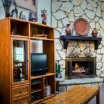 Living Rooms and Fireplaces
