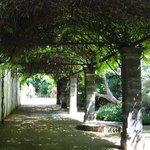 A walkway at the bodega