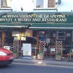 Grapevine, Portmadog, Wales