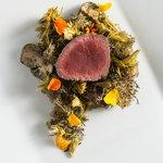 VENISON, reinere lichen, porcini, spruce tips