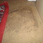 tache sur le tapis