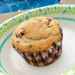 Poolside Homemade Blueberry Muffins