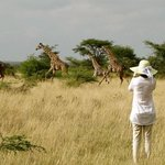 walking Safari in Simba Camp