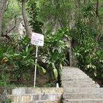 Escalera que lleva a la cueva taninul