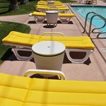 A line of comfy lounge chairs by the pool