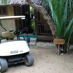 Golf cart and front of house