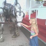 Jenna Loved all the beautiful horses!