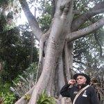 Aboriginal Heritage Walk
