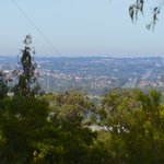 Looking out over the eastern suburbs