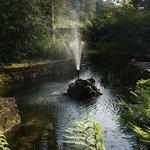 Le parc : idyllique...