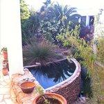 El patio al que dan todas las habitaciones es un oasis escondido en el valle de Rodalquilar