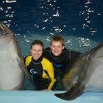 масса позитивных эмоций от плавания с дельфинами