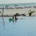 y excelente ubicacion de la piscina y la playa