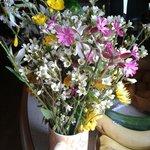 les fleurs sauvages ramassees au camping en mai 2014