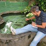 Lago com peixes