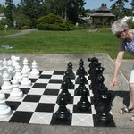 Play a giant chess match