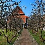 Entrance Wiharn white buddha image