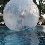 water zorbing in swimming pool