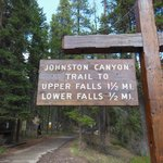 Beautiful Trail!