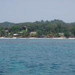 Dolphin Hotels Roatan Foto
