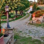 O caminho tipicamente Toscano