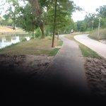 Path under bridge.