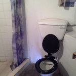 Shower with toilet and handbasin